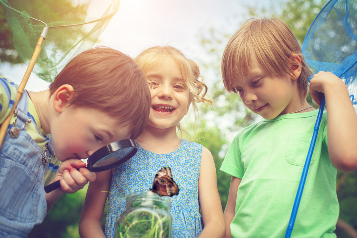 Summer Programs to Keep the Gifted Mind Active